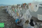 Why plastic bags aren't the enemy
