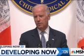 Bloomberg: Biden may delay 2016 decision