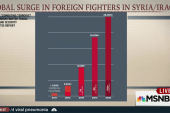 Fighting terrorism at home, abroad