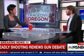 Deadly shooting renews gun debate
