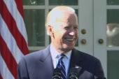 VP Joe Biden not running for president