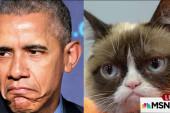 Obama compares Republicans to 'Grumpy Cat'