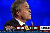 "Bush memo: ""Marco is a risky bet"""