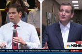 Cruz: It'll come down to me and Rubio