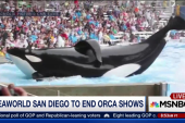 SeaWorld to end killer whale show in San...