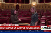 French senator on the fight against terrorism