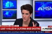 Multiple gunmen rare in U.S. mass shootings
