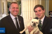 Pets on trains produce bipartisan response