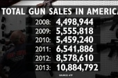 Guns sales soared on Black Friday