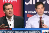 Cruz: I worked to defeat Rubio's bill