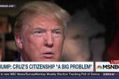Trump questions Ted Cruz's citizenship