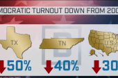Dem turnout down nearly 30% from 2008