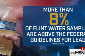High lead levels in 8% of Flint water samples