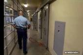 Lockup: Holman