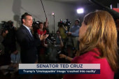 Cruz: Trump's campaign has 'crashed'