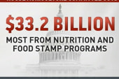 The GOP's attack on food stamps