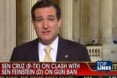 Top Lines: NRA, Nugent, Cruz, Beck, Palin,...