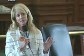 How Wendy Davis succeeded in demonstrating...
