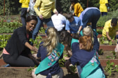 'Green Shoots' with First Lady Obama - and...