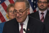 Schumer on immigration: 'The art of...