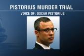 Oscar Pistorius testifies in own defense