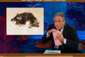 Jon Stewart, Stephen Colbert weigh in on...
