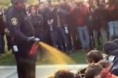 Police training expert: Spraying...