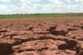 US suffers worst drought in 50 years