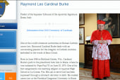 Conservative cardinal removed from committee
