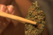 Poll: Voters in favor of pot legalization