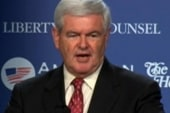 Is it Newt's turn to be flavor of the week?