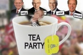 Tea Party comes on strong in 2012 races