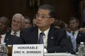Will firing Shinseki solve VA scandal?