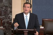 Ted Cruz, hurting the GOP brand?