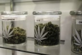Colo. becomes world's first legal, fully...