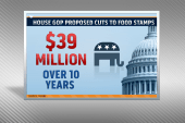 Food stamps cut: families in danger