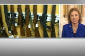 DNC Chair: Gun control push isn't over