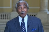 Rangel: NRA ad an insult