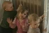 Scotland Yard: Chance missing child McCann...
