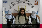 Pakistani Taliban chief really dead, again