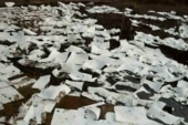 Exxon turns to paper towels for oil spill...