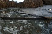 Tests still detect remnants of coal ash spill