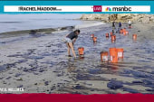 Weak oil spill response drives citizen action