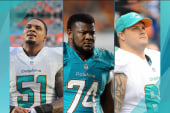 New details in Dolphins bullying case