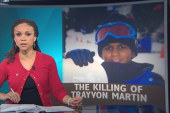 Dissecting the details of Trayvon Martin's...