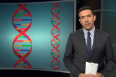 Melber: DNA is a civil rights issue