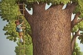 Magic Tree House books chronicles lives of...