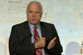McCain blames Tea Party for shutdown