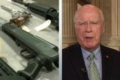 Full Senate expected to vote on gun...