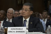 More calls on Shinseki to resign